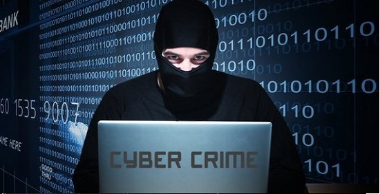Cyber Law Cyber Crime And Examples Of Computer Crimes